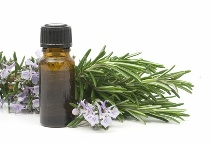 free aromatherapy recipes for your house