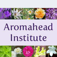 how to start an aromatherapy business