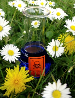 health safety using aromatherapy